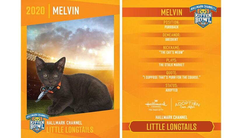 LL-Melvin.jpg