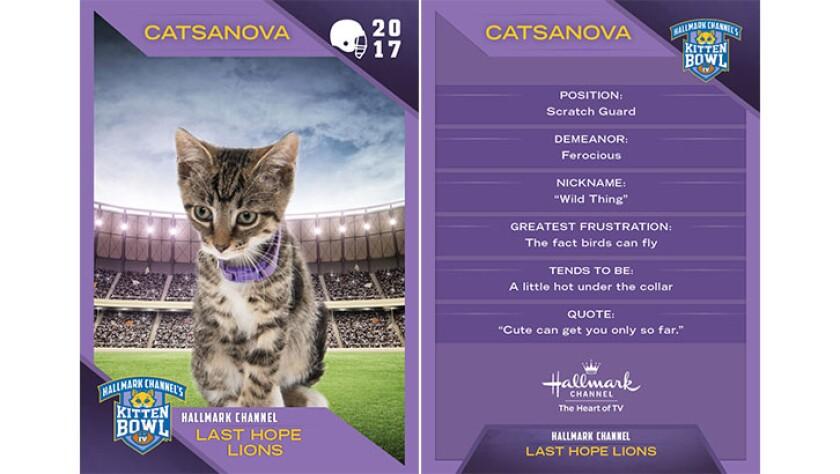 P1-Catsanova-KBIV4_TrdingCrds_.jpg