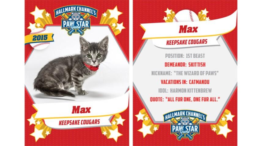 paw-star-Max-2015