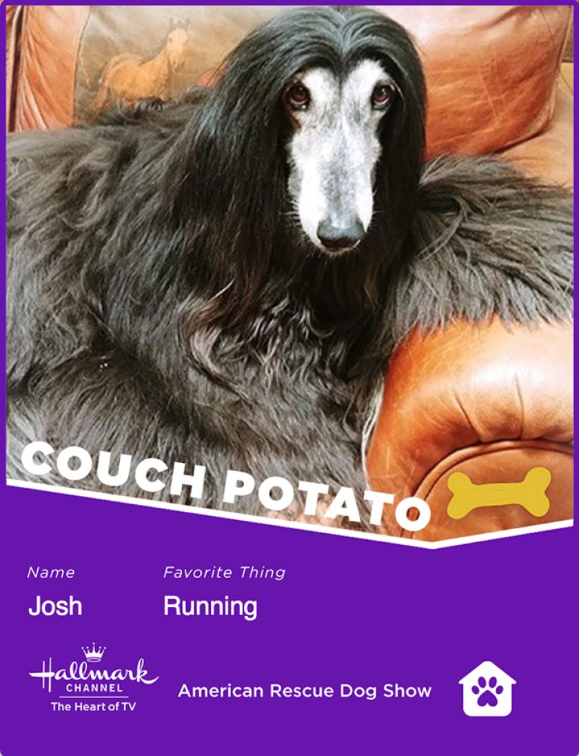 Josh-couchpotato.png