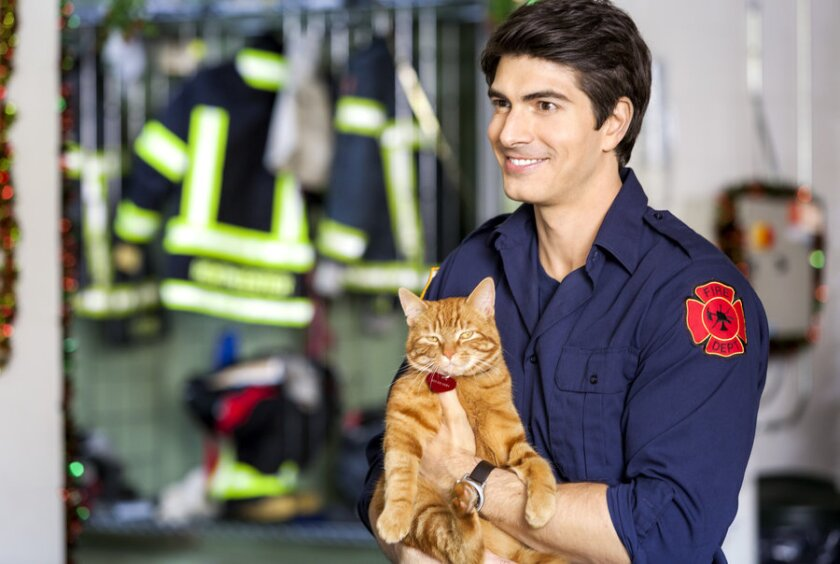 THE NINE LIVES OF CHRISTMAS -With Christmas approaching, a handsome fireman afraid of commitment adopts a stray cat and meets a beautiful veterinary student who challenges his decision to remain a confirmed bachelor.  Photo: Brandon Routh Photo Credit: Copyright 2014 Crown Media United States, LLC/Photographer:David Owen Strongman
