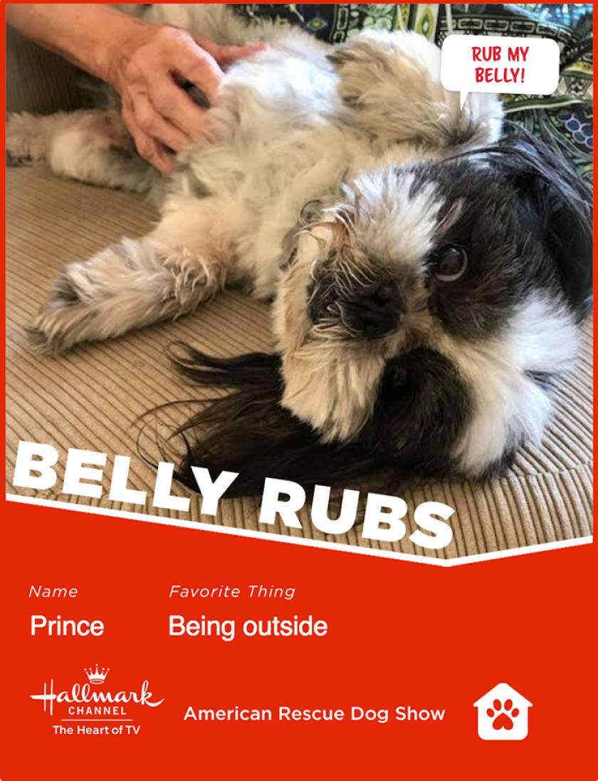 Prince-bellyrubs.png