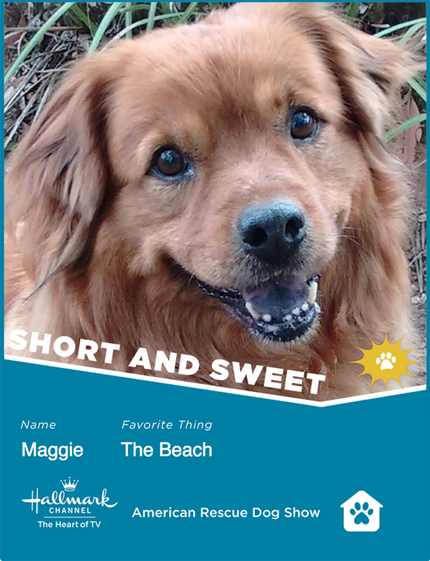 Maggie-ShortSweet.png