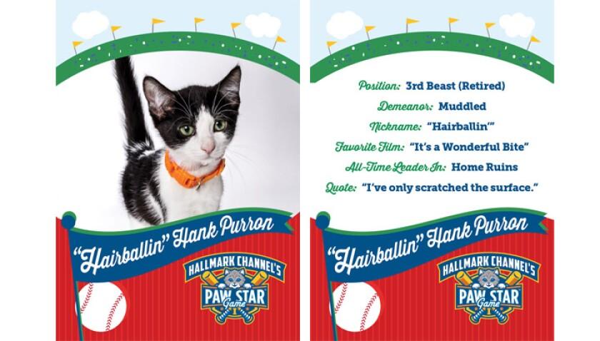 paw-star-hairballin-hank-purron-2015