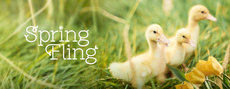 DIGI21_SpringFling_DynamicLead_1440x560-gen.jpg