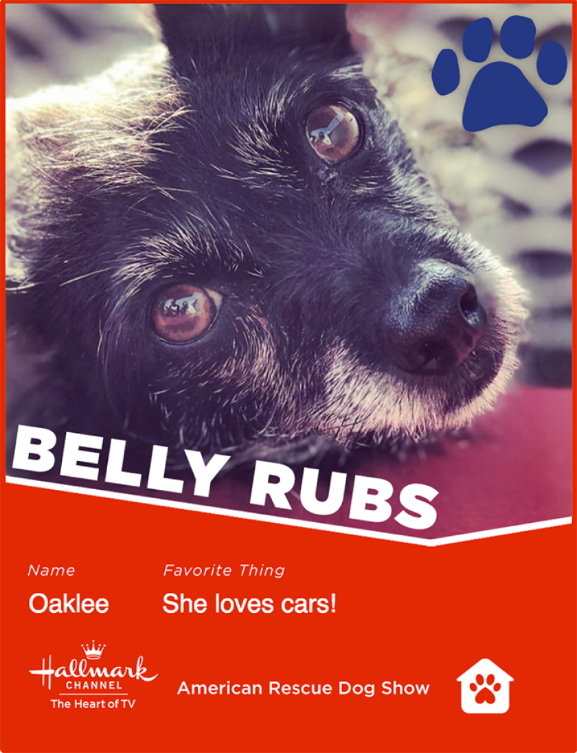 Oaklee-bellyrubs.png