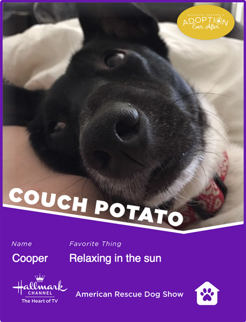Cooper-couchpotato.png