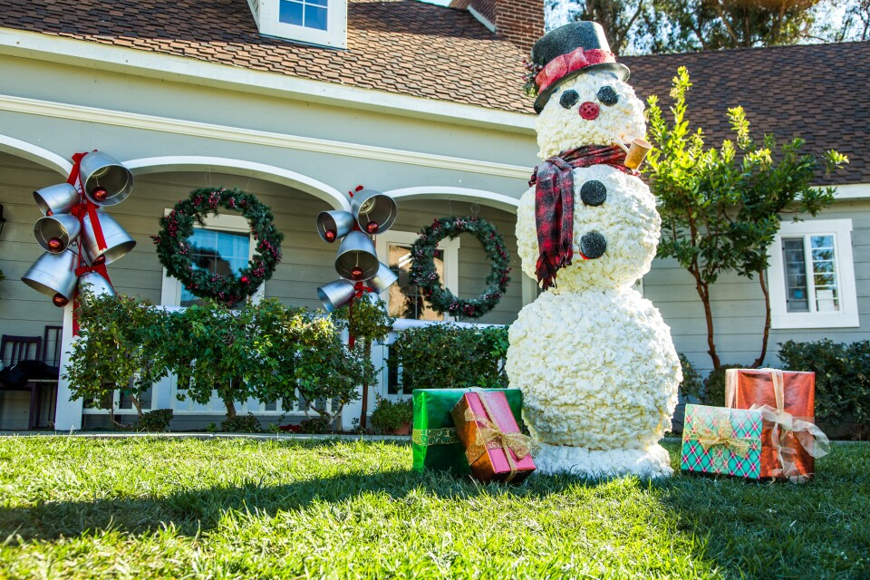 product-cardboard-snowman-ken.jpg