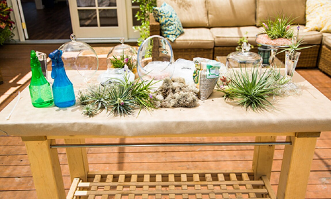 h-f-ep1214-product-planters.jpg