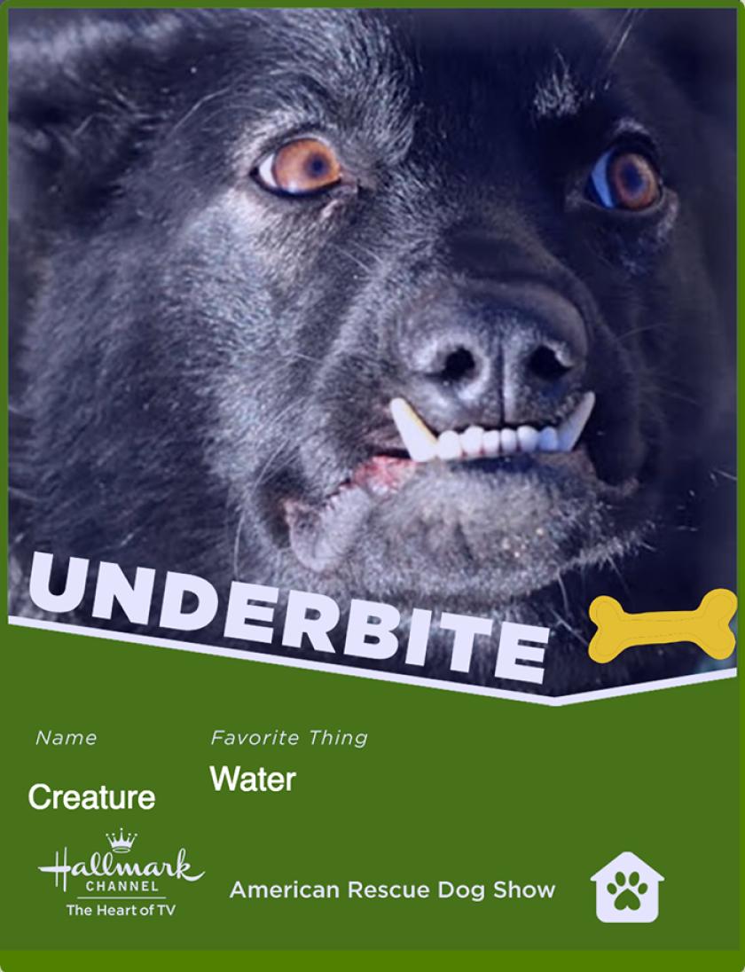 creature-underbite.png