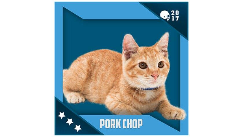 Kitten Bowl IV Emojis - North Shore Bengals - Pork Chop