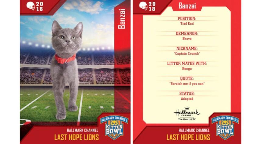 Kitten Bowl Trading Cards - Last Hope Lions - Banzai
