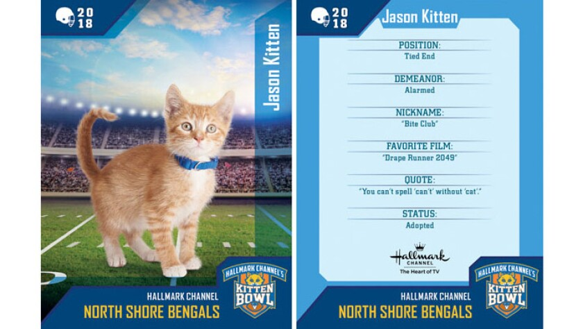 jason-kitten-north-shore-bengals-card.jpg