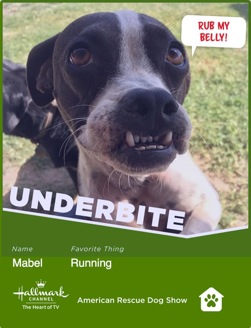 mabel-underbite.png