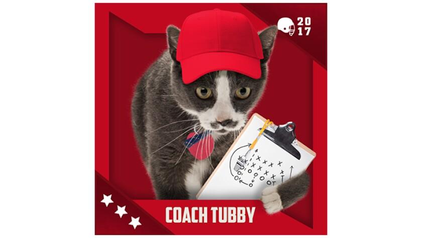 Kitten Bowl IV Emojis - Boomer's Bobcats - Coach Tubby