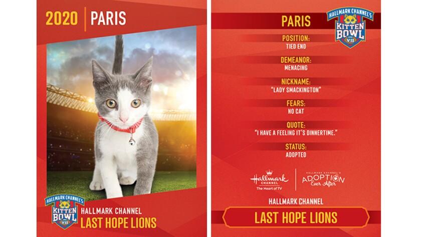 Last Hope Lions - Paris - Player Profiles 2020