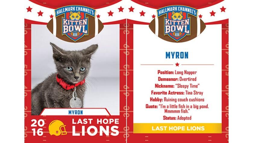 Myron-lions-KBIII.jpg