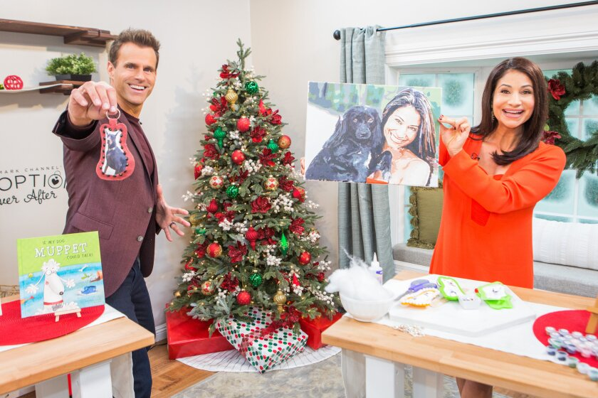 Home and Family 9031 Final Photo Assets