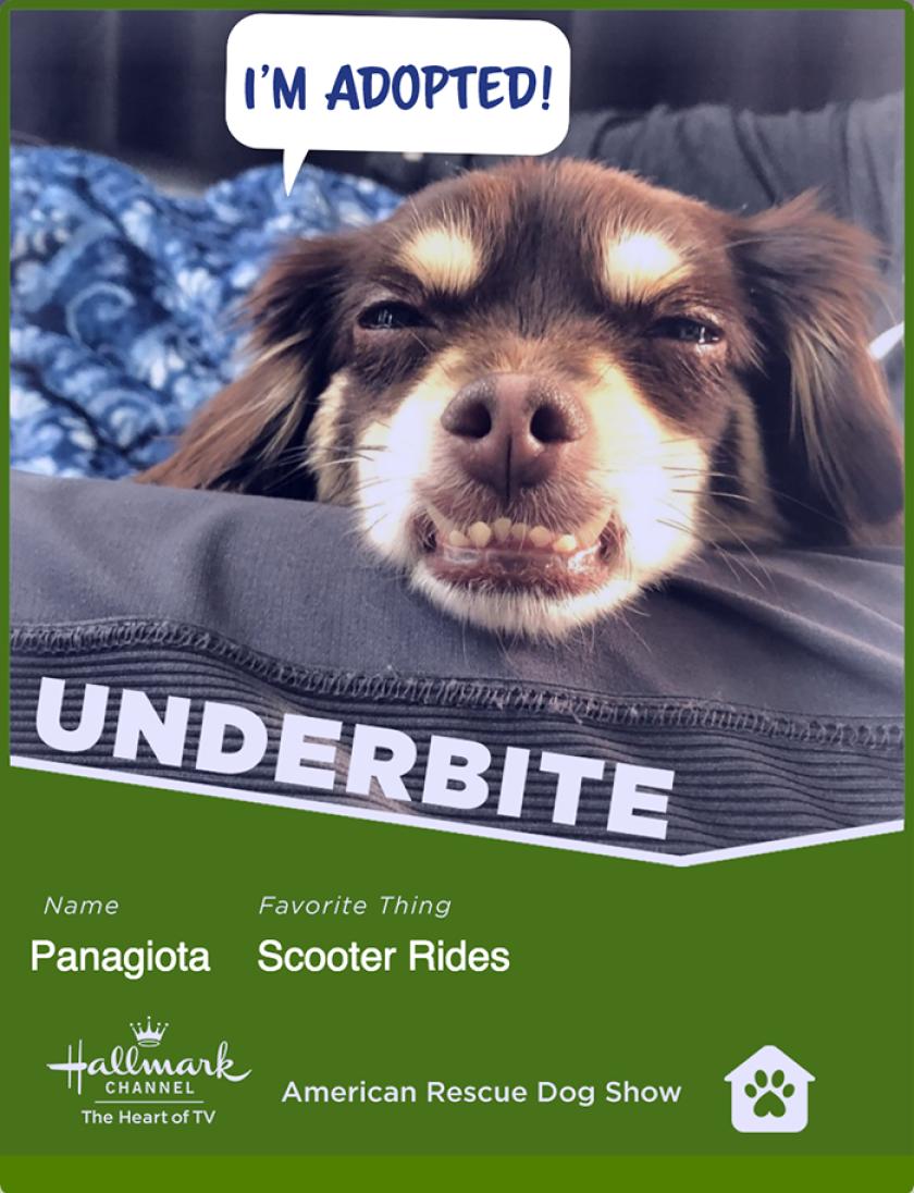 panagiota-underbite.png