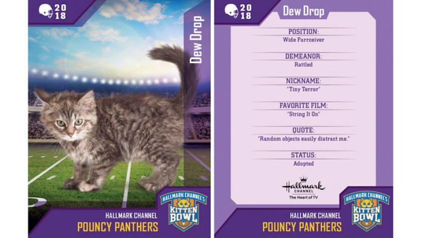 dew-drop-pouncy-panthers-card.jpg