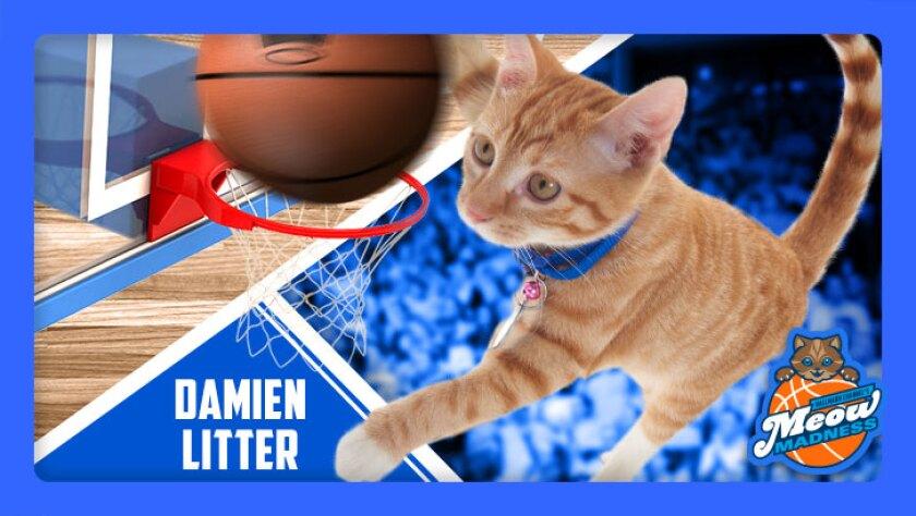 DIGI17_MeowMadness_emojis_listicles_DamienLitter.jpg