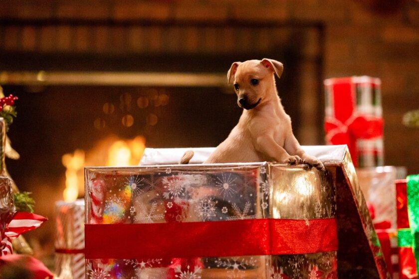 10 Ways to Celebrate Christmas - 1