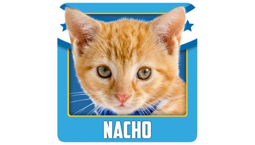 Emojis-KBIII-Bengals-Nacho.jpg