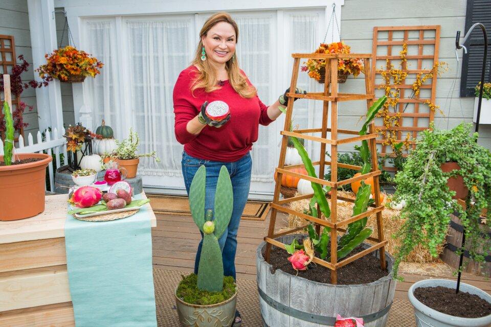 Shirley Bovshow - Edible Succulents & Cactus