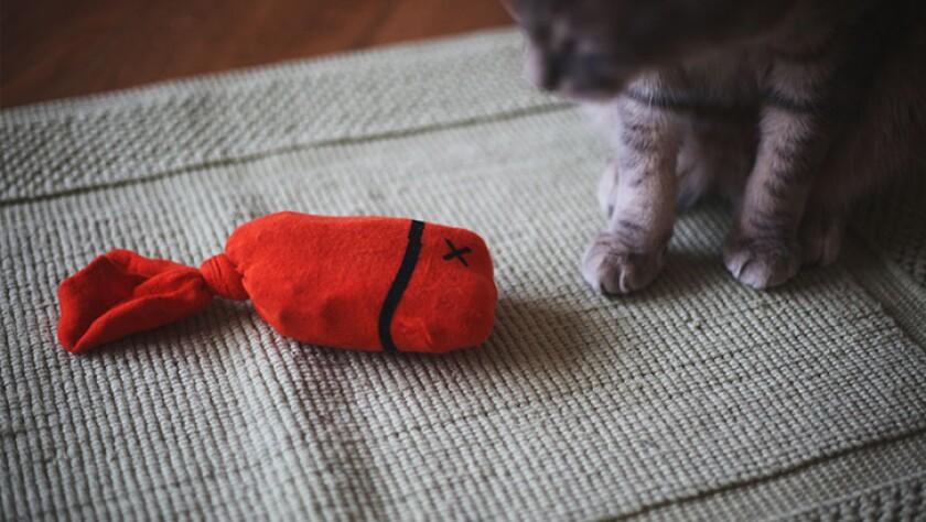 01_homemade-cat-toys.jpg