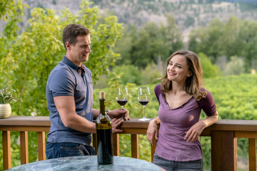 Photos from Autumn in the Vineyard - 11