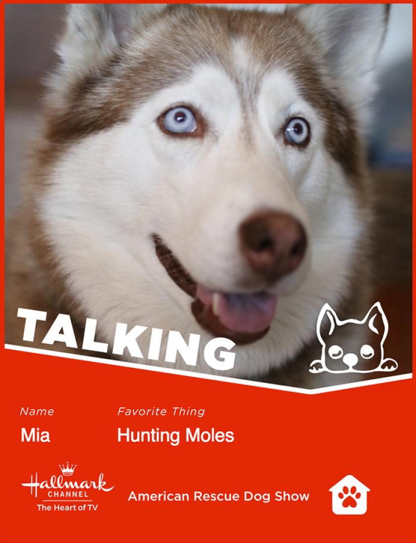 Mia-talking.png