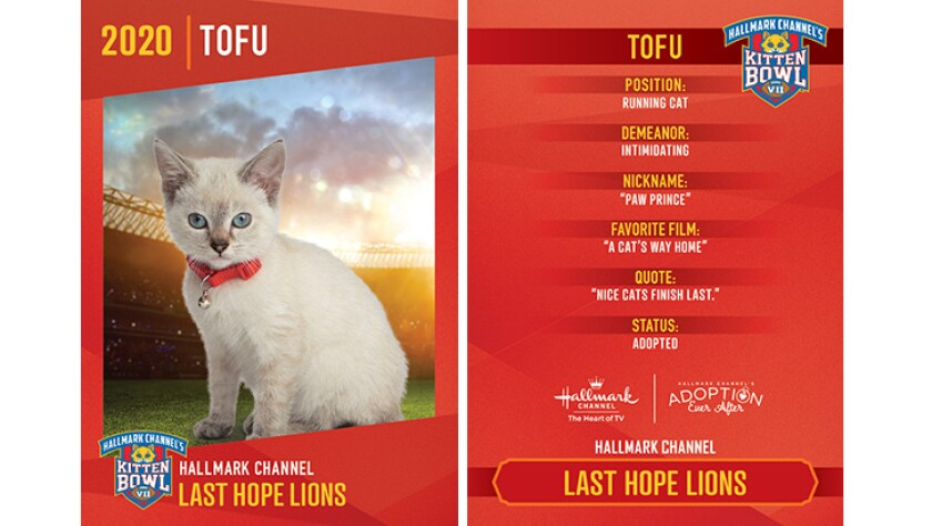 LHL-Tofu.jpg