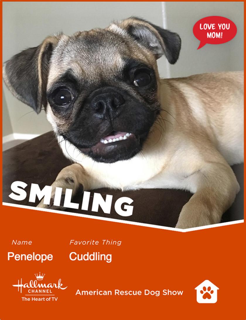 Penelope-smiling.png