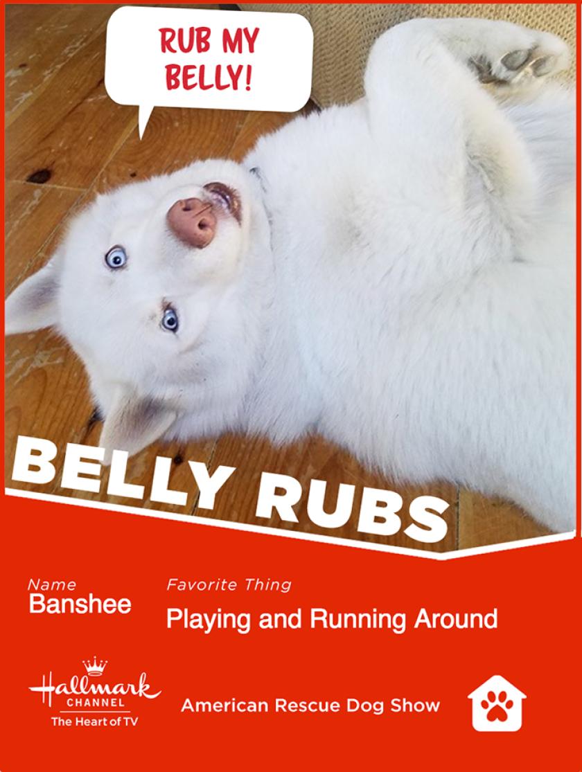 Banshee-bellyrubs.png