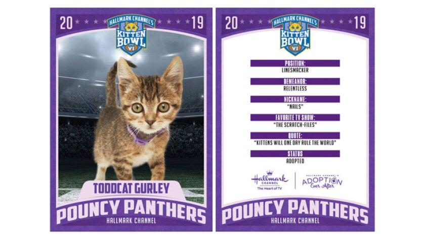 PP-Toddcat-Gurley-726x410.jpg