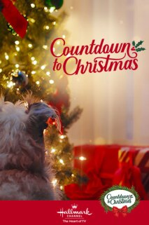 Christmas Countdown Sweepstakes 2020 Countdown to Christmas 2020   Movies, Sweepstakes