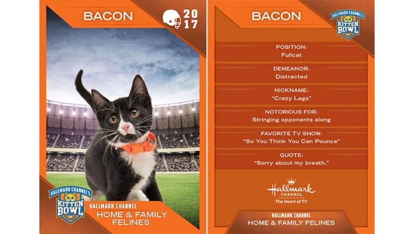 P3-Bacon-KBIV4_TrdingCrds_.jpg
