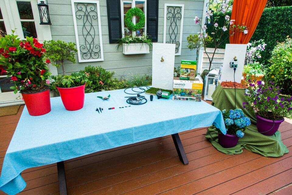 How to Water Plants While on Vacation