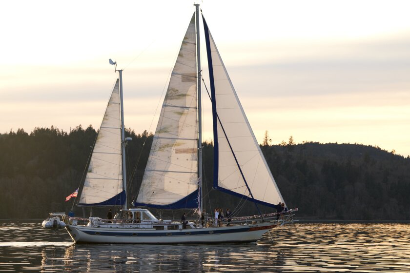 Photos from Sailing into Love - 6