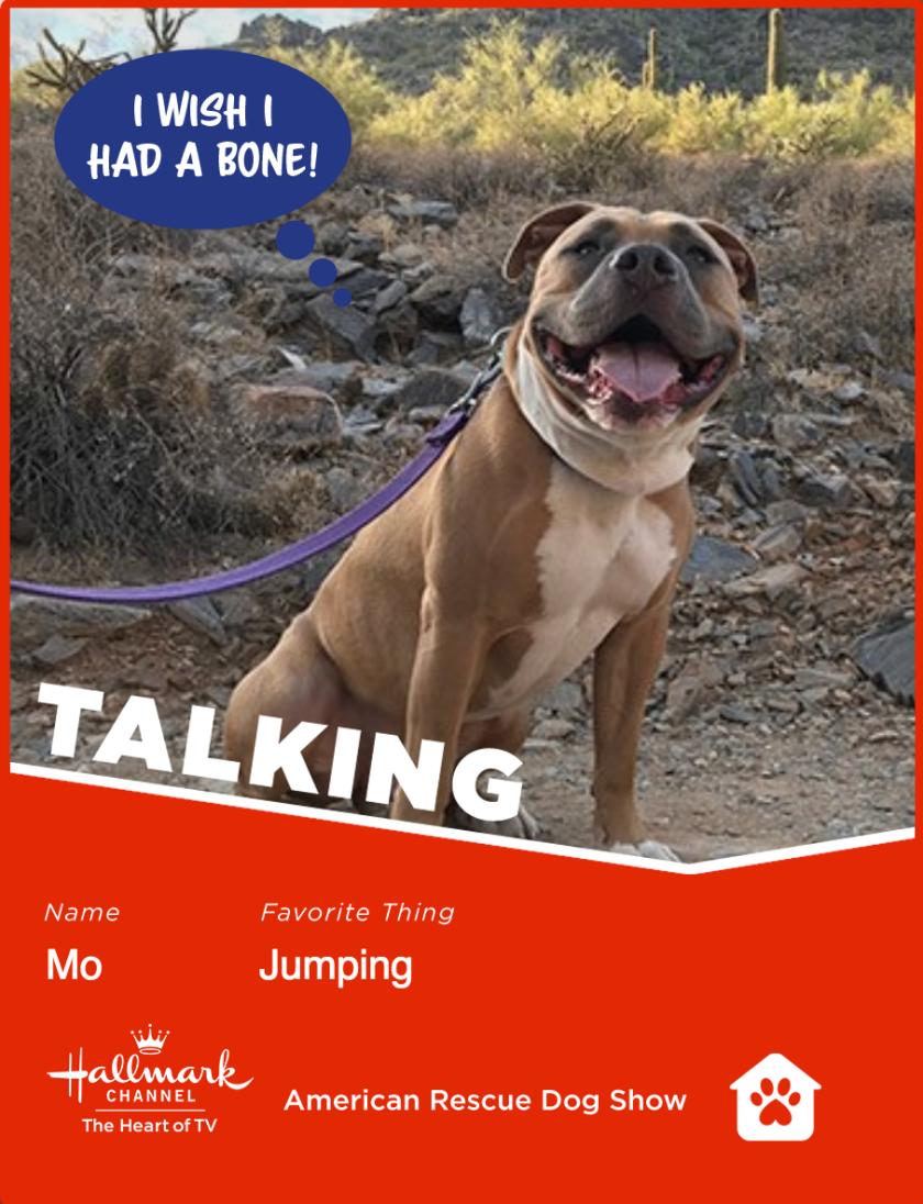 Mo-talking.png