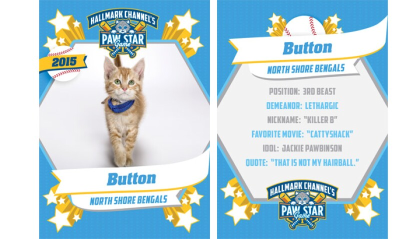 paw-star-button-2015
