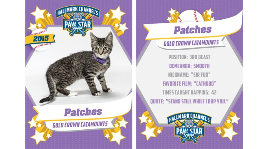 paw-star-patches-2015