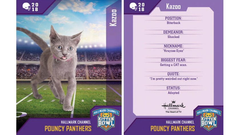kazoo-pouncy-panthers-card.jpg