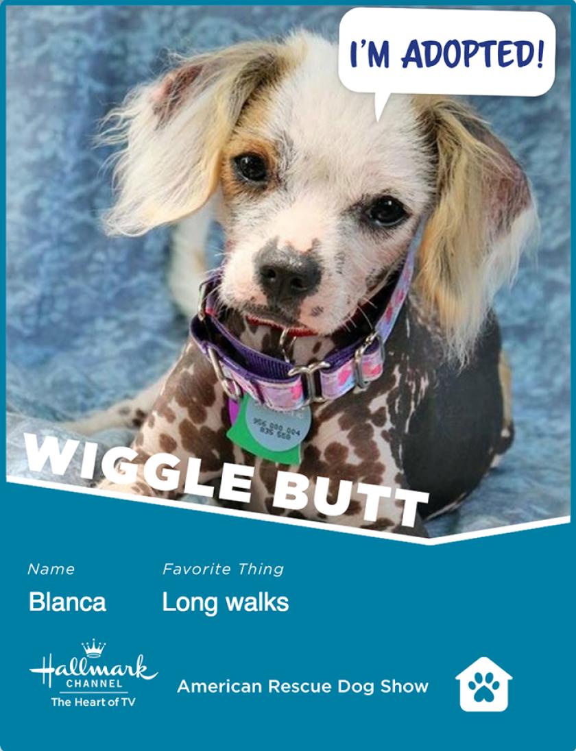 Blanca-wigglebutt.png
