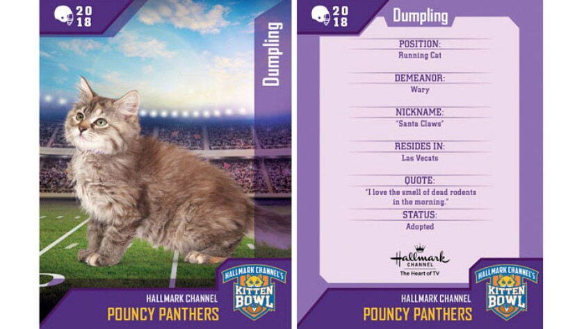 dumpling-pouncy-panthers-card.jpg