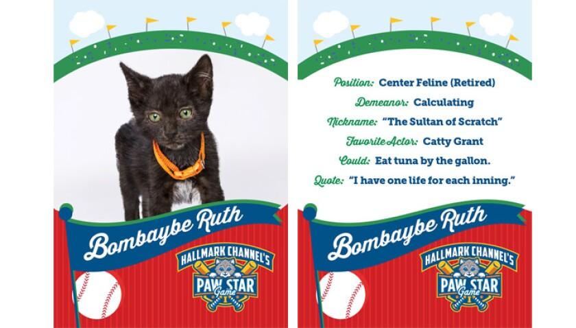 paw-star-bombabe-ruth-2015