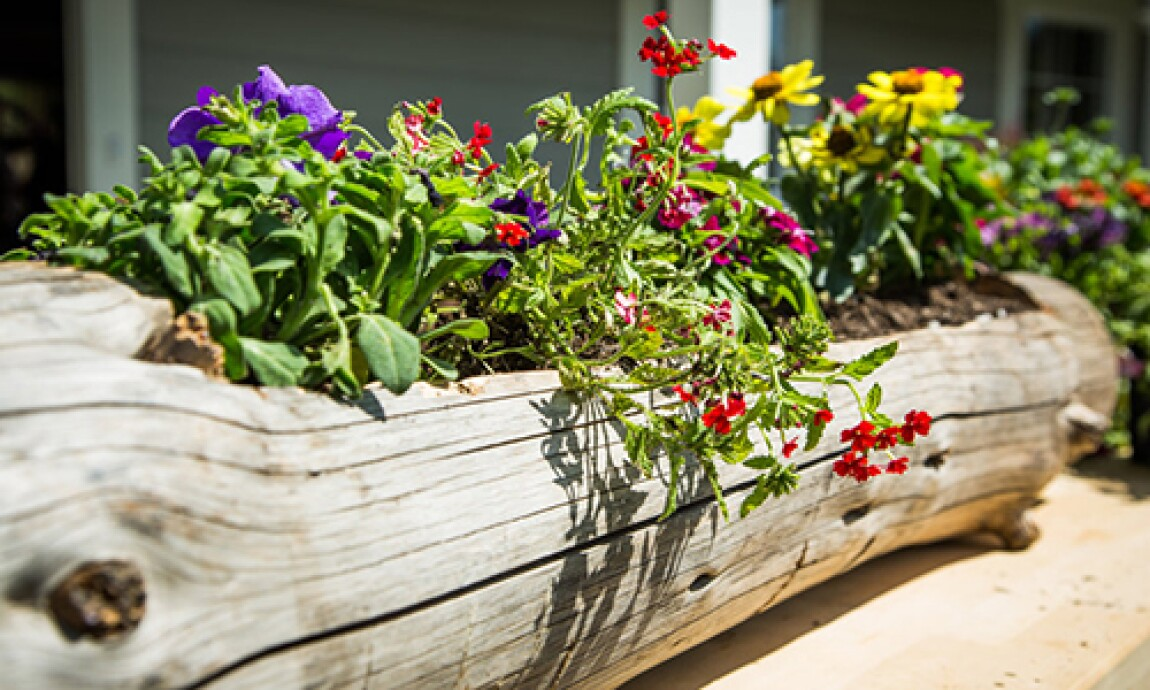 h-f-ep1168-product-log-planter.jpg