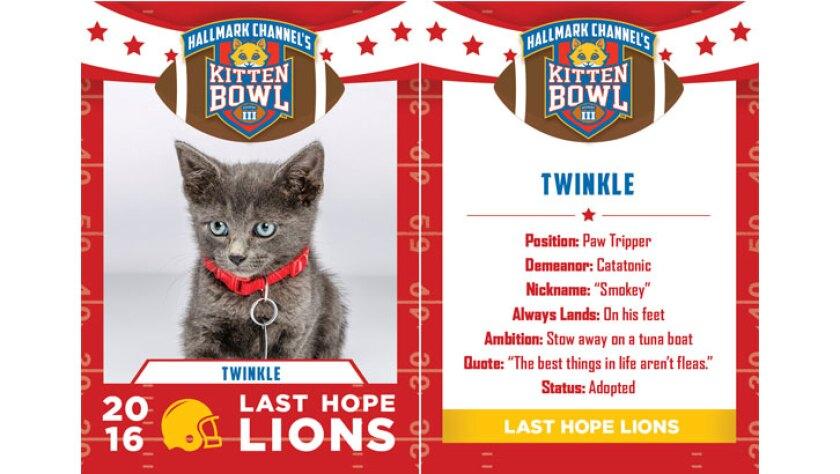 twinkle-lions-KBIII.jpg