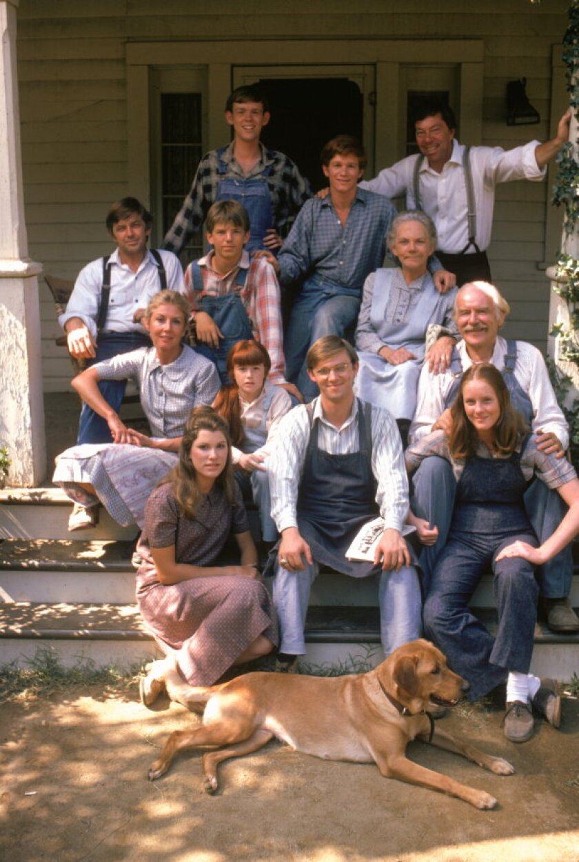 About The Waltons