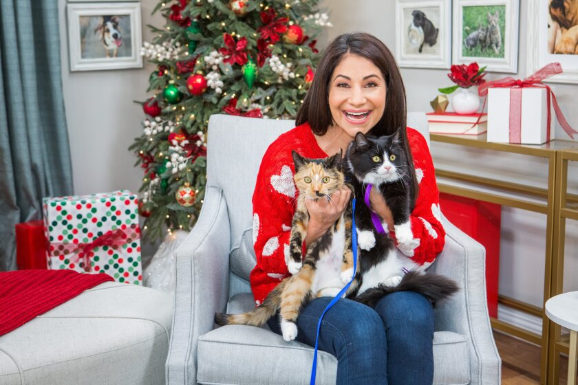 Home and Family 9052 Final Photo Assets